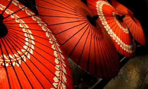 Wagasa - Traditional umbrella