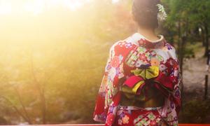 What is Kimono?